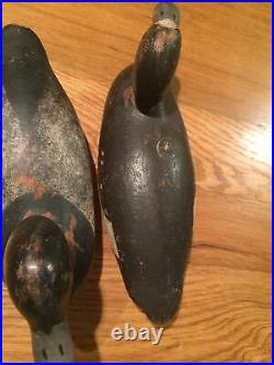 Vintage Pair Mason Blue Bill Duck Decoys Original Painted Eye Model Drake & Hen