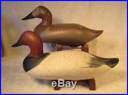 Vintage S&d Pair Canvasback Duck Decoys By R. Madison Mitchell
