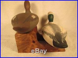 Vintage S&d Pair O/p Bufflehead Duck Decoys By R. Madison Mitchell