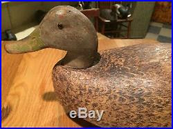 Vtg Walter Snow Black Duck Decoy Excellent Original Paint Detailed Stamping Old