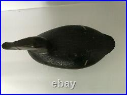 Waterfowl Decoy Canvasback by John B. Graham Repainted as Black Duck